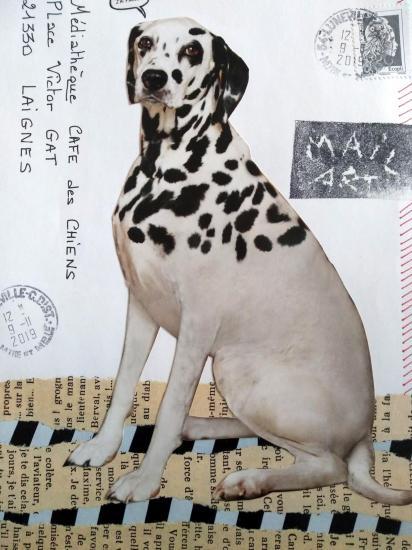 Art postal 50